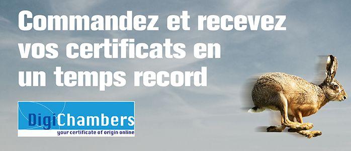 Banner_Digi-Chambers_Hainaut1